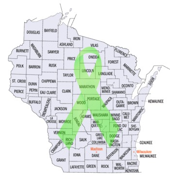 Wisconsin Lyme Support Groups