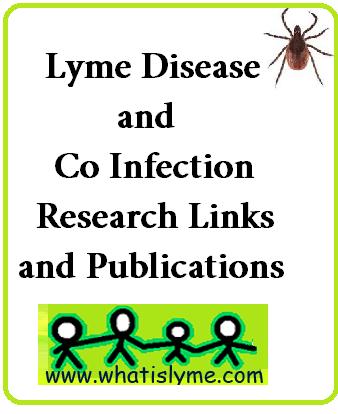 lyme disease research