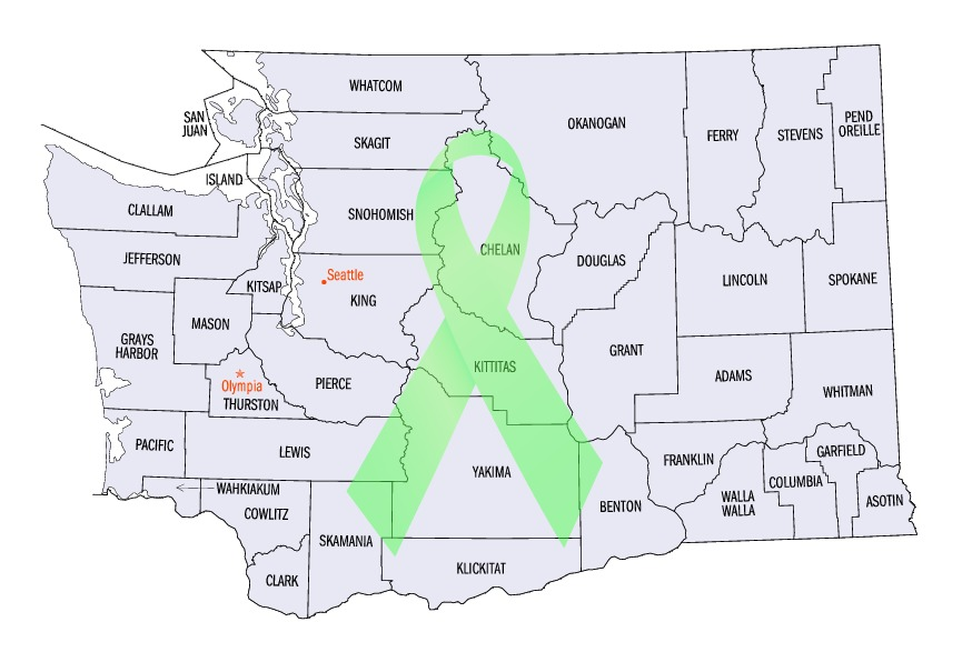 Washington Lyme Support Groups