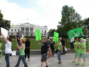 MayDay 2011
