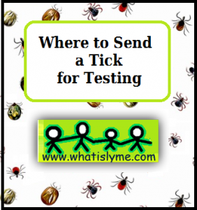 labs that test ticks for lyme disease