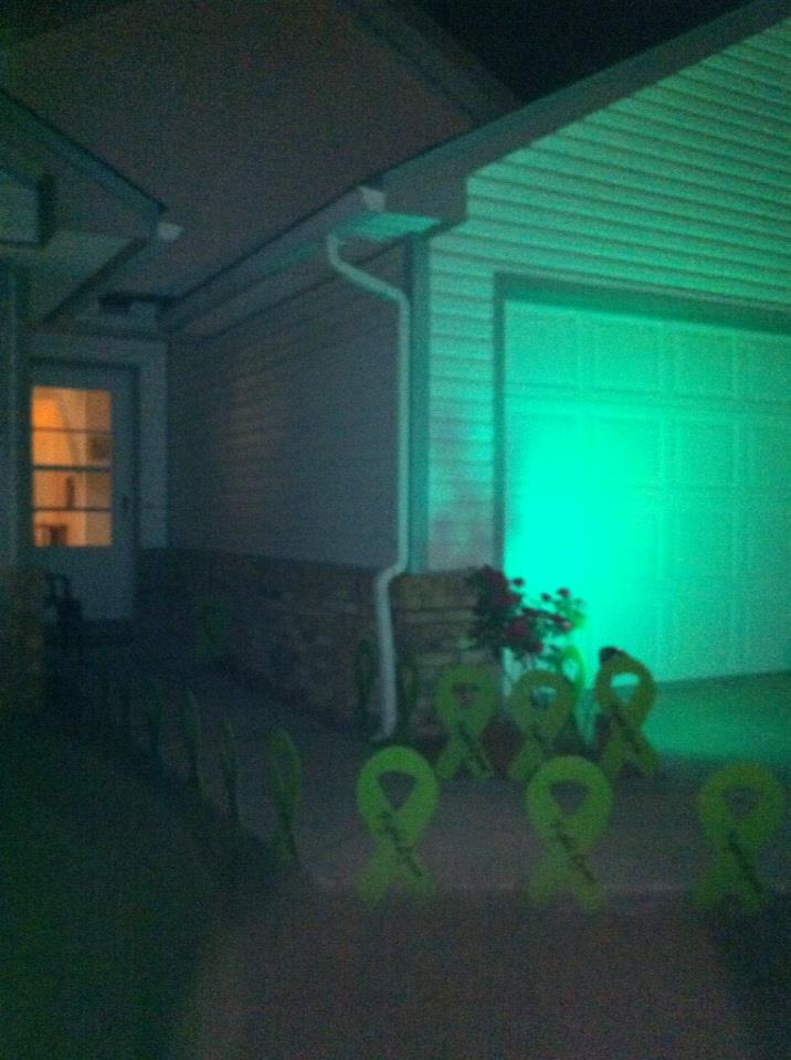 Connie Murrays House showing Lyme Awareness!