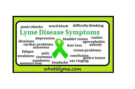 the stages of Lyme Disease