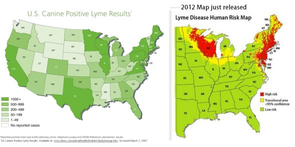 canine lyme map vs human lyme map