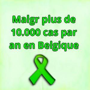Belgium Lyme