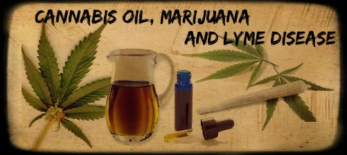 can cannibis oil help with lyme disease