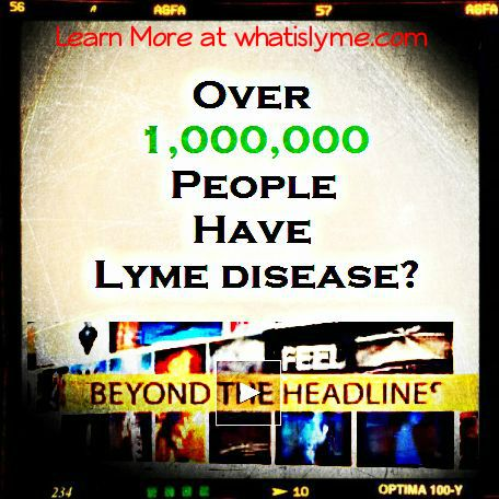 1,000,000 people with lyme diseaes