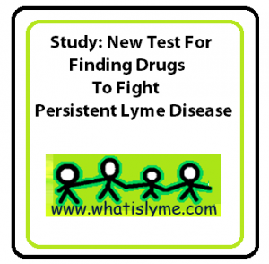 study for persistant lyme