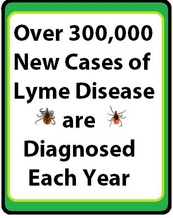 ticks-lyme-300,000