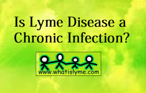 lyme, disease, chronic, infection, acute, persistant, easy to treat, symptoms, research