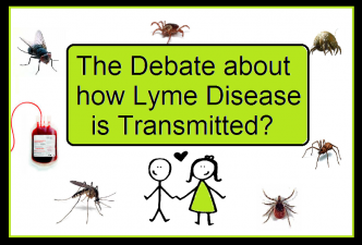 the debate on how Lyme Disease is transmitted