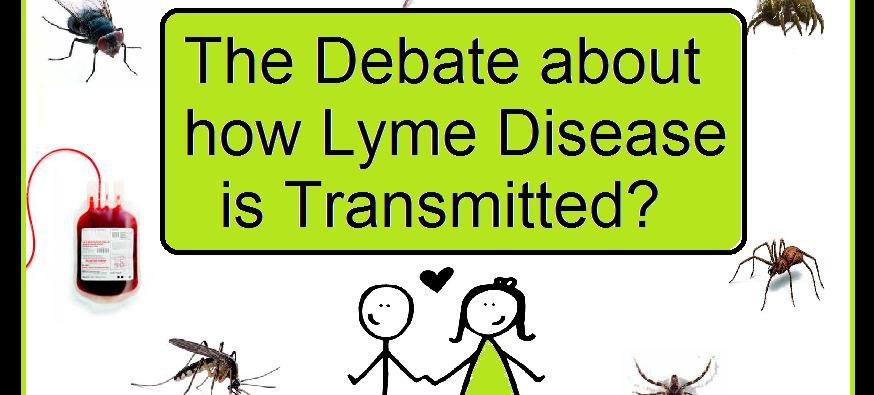 the debate on how Lyme Disease is transmitted