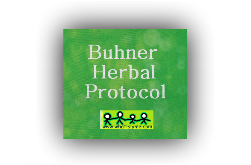 buhner-herbal-protocol-natural-treatment