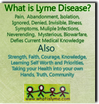 lyme disease questions and answers