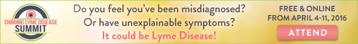 LYME16_banner_attend_728x90