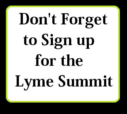 lyme-summit