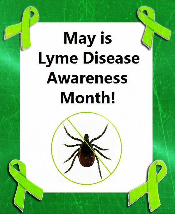 may is lyme disease awareness month