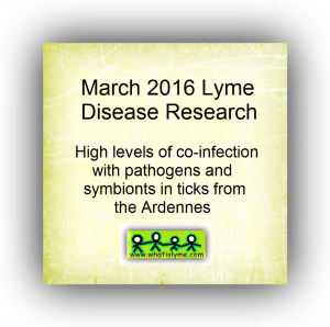 latest lyme disease and co infection research