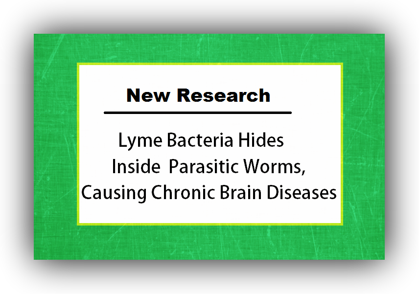 newest Lyme Disease research